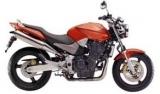 Hornet 900