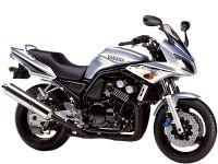 Yamaha FZS600 Fazer 2002 - Silber Version - Dekorset
