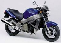 Honda X11 2000 - Blaue Version - Dekorset