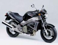 Honda X11 2000 - Schwarze Version - Dekorset