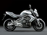 Kawasaki ER-6N 2009 - Silbere Version - Dekorset