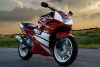 Honda CBR 600 F2 - Rot/Weiße Version - Dekorset