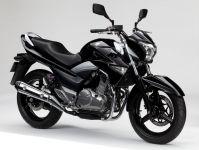Suzuki Inazuma 2014 - Schwarze Version - Dekorset