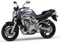 Yamaha FZ6 2004 - Titangraue Version - Dekorset