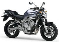 Yamaha FZ6 S2 2007 - Titangrau Version - Dekorset