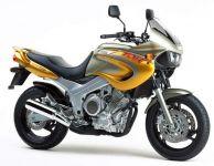 Yamaha TDM 850 4TX 1999 - Gold/Silber Version - Dekorset