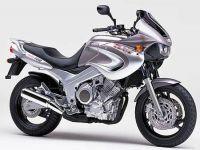Yamaha TDM 850 4TX 2000 - Silber/Graue Version - Dekorset