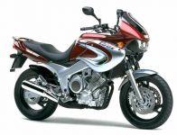 Yamaha TDM 850 4TX 2001 - Burgunder/Silber Version - Dekorset