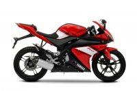 Yamaha YZF-R125 2009 - Rot/Schwarze Version - Dekorset
